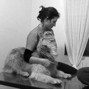 veterinaire osteopathe canin